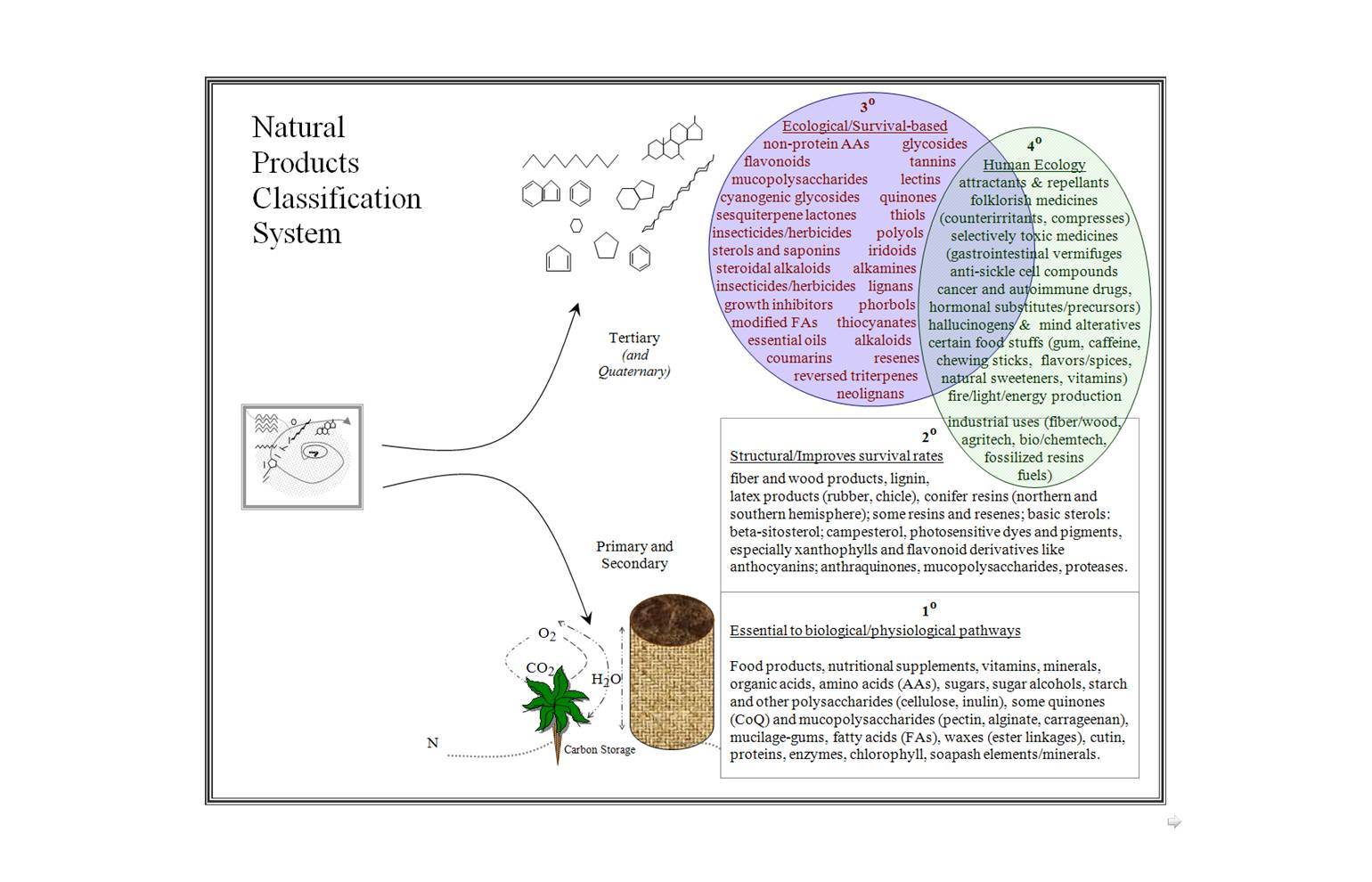 Dissertation A Phytochemical and Pharmacological Study of Te