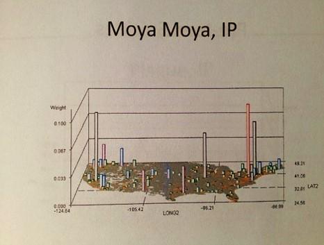 nphg_moyamoya