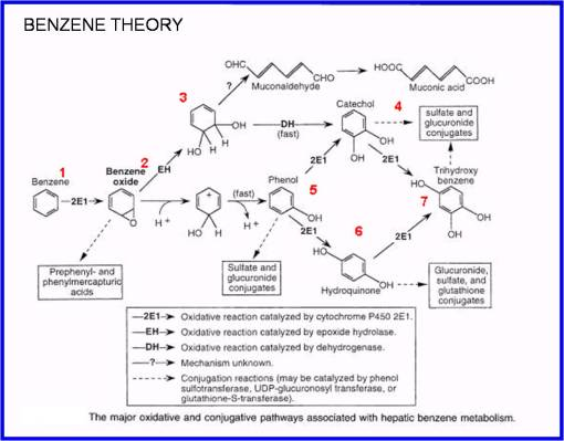 benzene4_theory