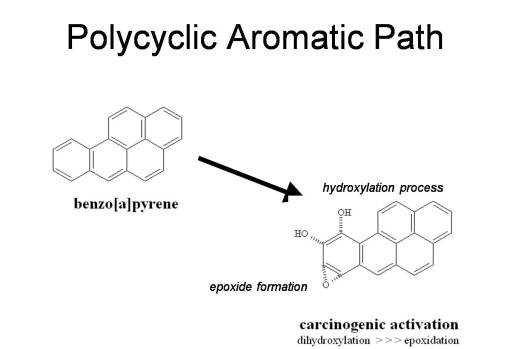 Polycyclic Aromatics