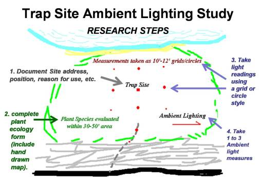 Steps taken in the analysis of trapsite canopy light penetration data