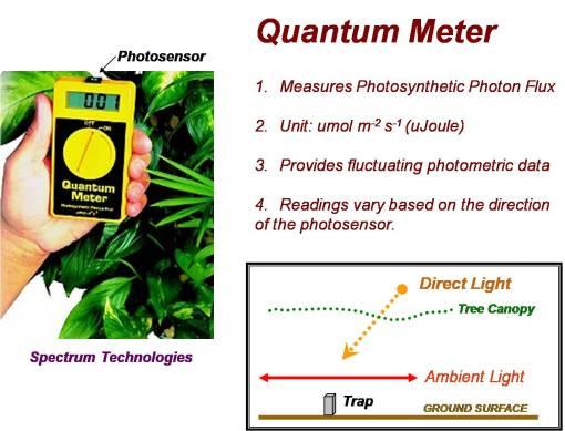 QuantumMeter