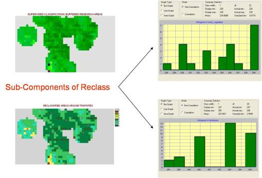 Subcomponents of Two Reclass Fields - Moist-vegetated and Deciduous
