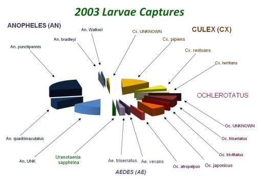 2003LarvaCatches