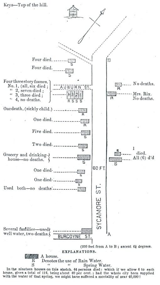 Locavores synthesis essay