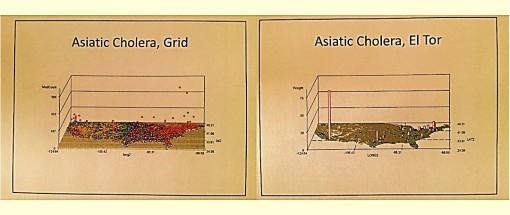 AsiaticCholera-allGrid_ElTor_nonGrid