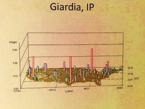Giardia_IP