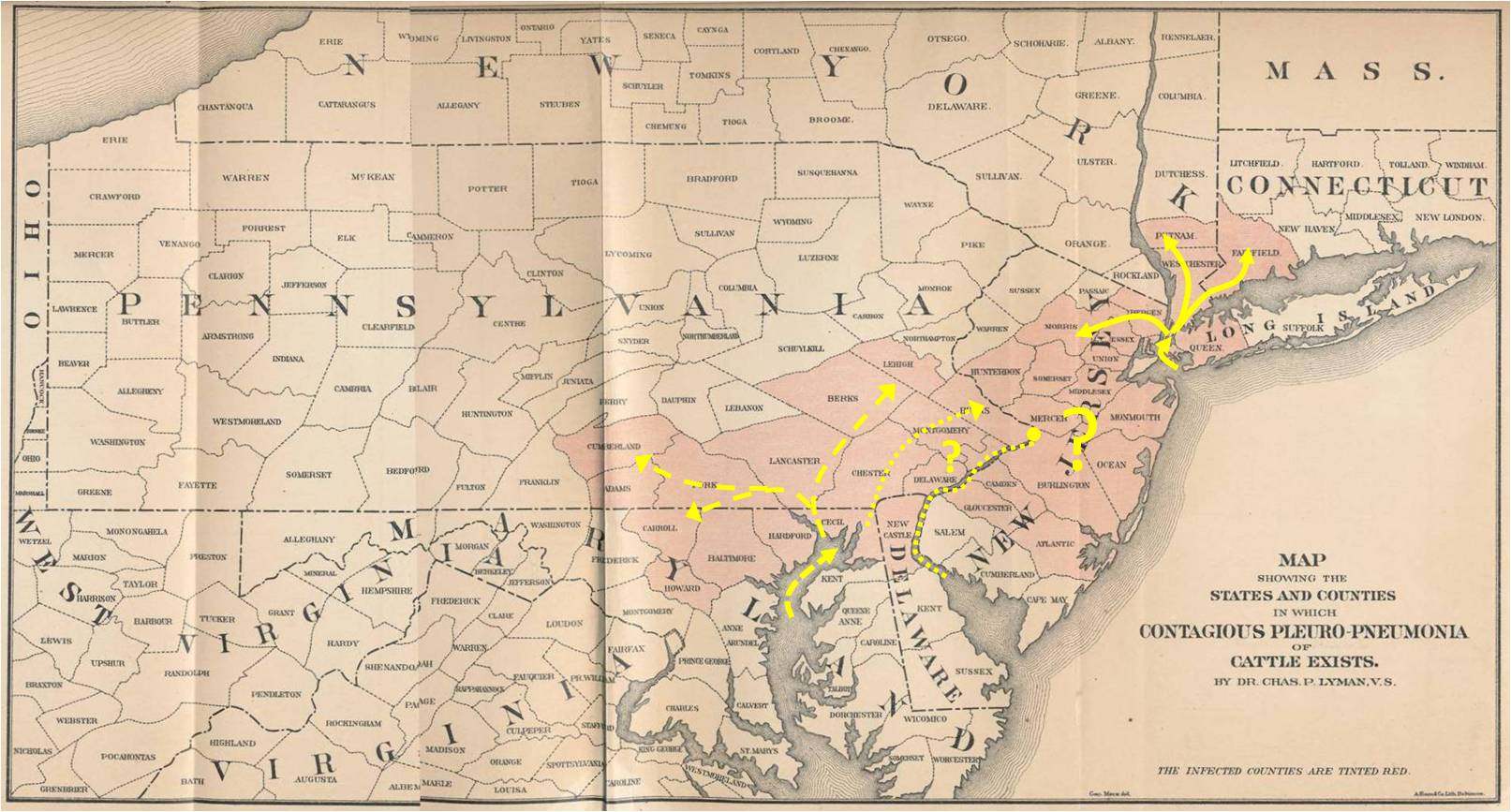 The Contagious Lung Plague Of Cattle Brian Altonen - Pneumonia map us 201