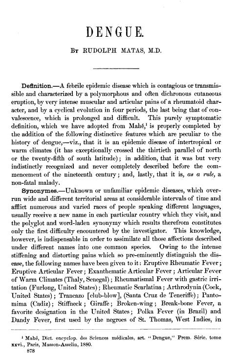 dengue virus essay in english