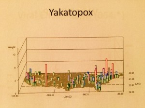 YakatoPox