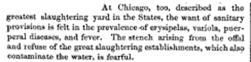 Chicago_TheGReatSlaughteringYardintheStates_May1864