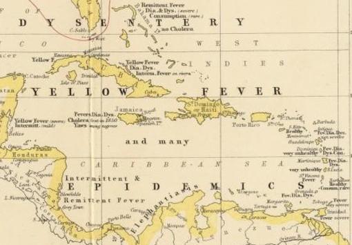 AlexanderKJohnston_JamaicaSetting_closer