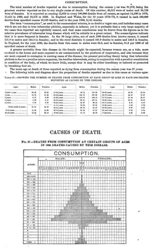 1890Census_91_Consumption_Paragraph_populationpyramidofdeaths