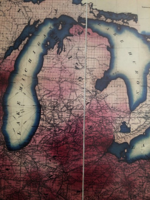 CarneysSeriesofMedicalCharts_1874_Phthisis_18_Michigan-sm-contrasted