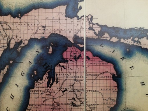 CarneysSeriesofMedicalCharts_1874_Phthisis_32-3Greatlakes-Chippewa-sm-contrasted