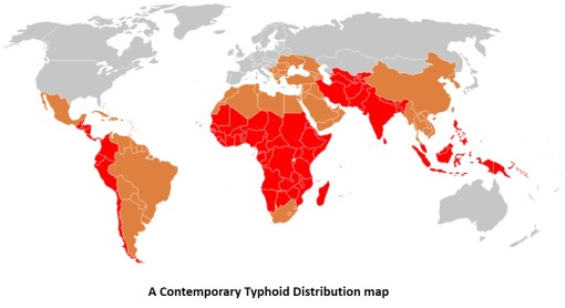 Contemporarytyphoidmap