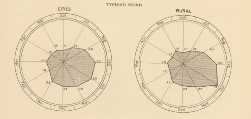 TyphoidDeathsbyMonth_FlorenceNightingalegraph_1900