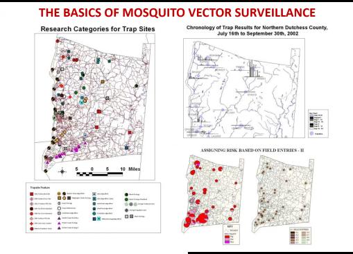 WNV0_Mosquitos