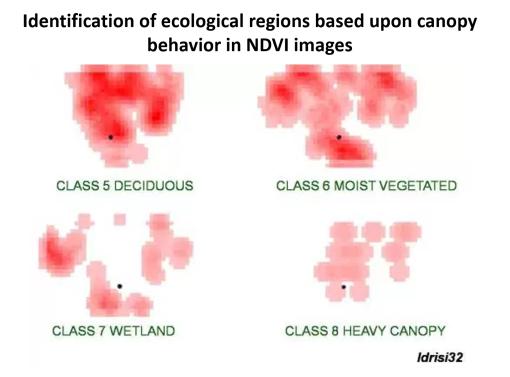 WNV10_EcologicalNDVIs
